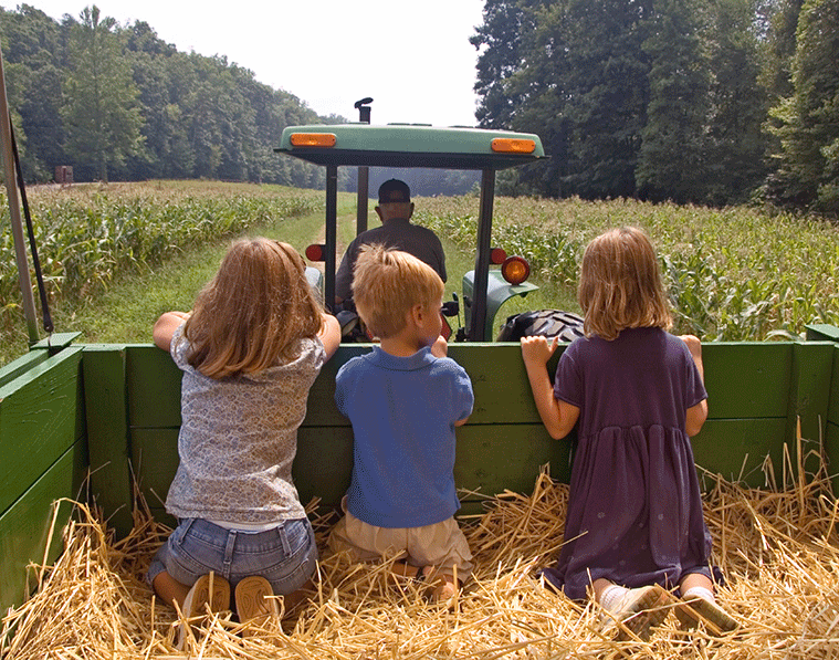 Farmer with children